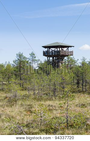 People On Watch Tower Of Viru Bog