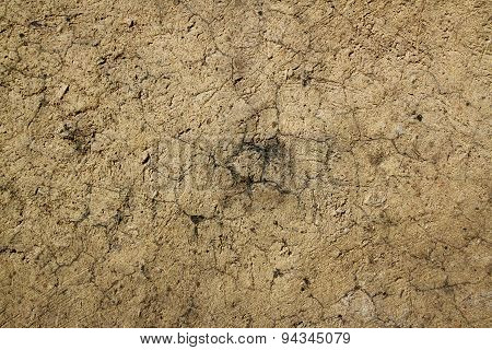 Cracked clay texture