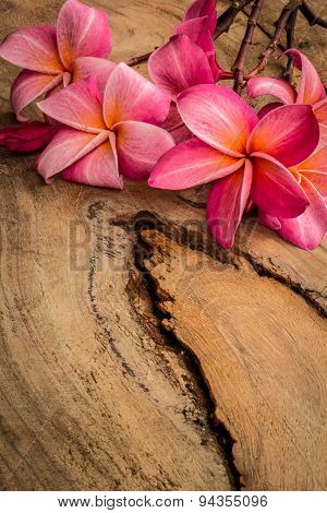 Red Frangipani Placed On A Wooden Floor.