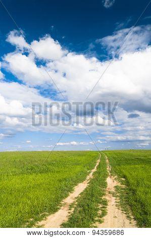 Through the Green Way Ahead