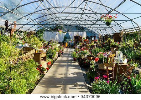 Sunny Hothouse In A Little Farm Of Plants