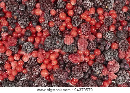 Background Of Many Frozen Berry Fruits