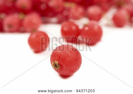 Macro Shot Of A Frozen Currants