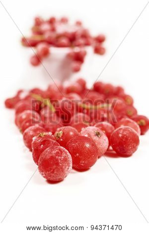 Macro Shot Of Frozen Currants
