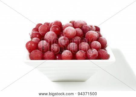 Frozen Red Currants In White Bowl