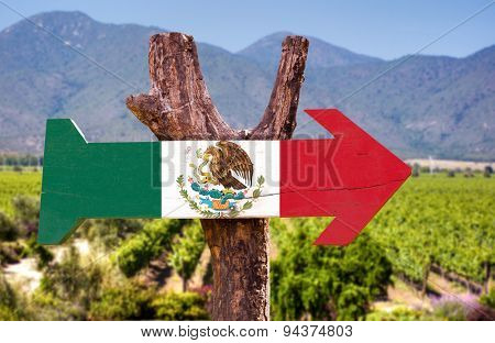 Mexico Flag wooden sign with winery background
