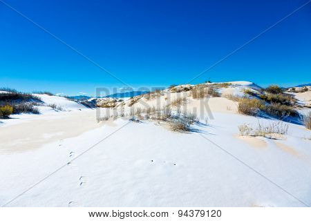White gypsum sand of the desert with snow