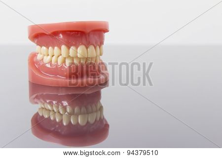 Set of artificial false teeth