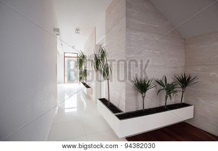 Elegant Decorated Hallway