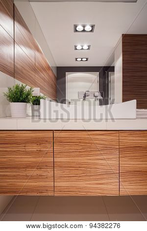 Wooden Style Bathroom