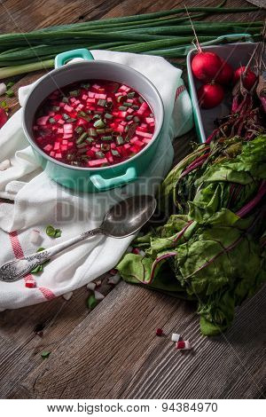 Beetroot Soup With Chives And Radishes