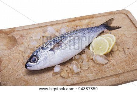 Fish Bogue With Lemon