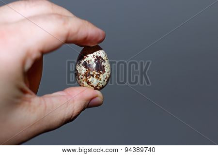 Closeup Hand Holding Two Fingers Quail Egg With Small Depth Of Field