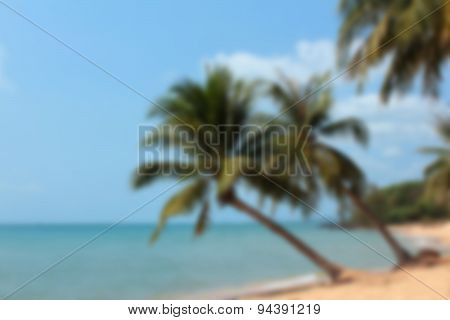 summer beach background  - ocean and palm trees , soft focus
