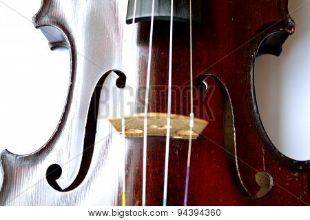 Antique Violin Closeup, White Background