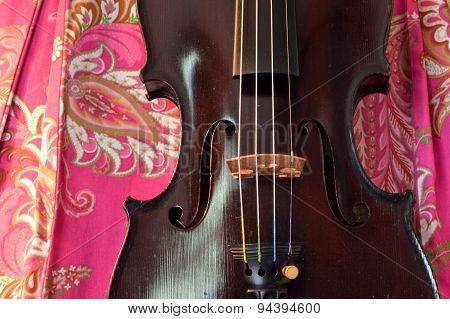 Antique Violin On Pretty Background
