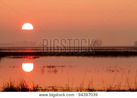 Sunset In Hungary