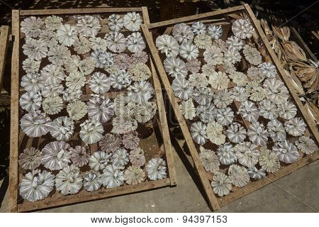 Asia Myanmar Myeik Dry Fish Production