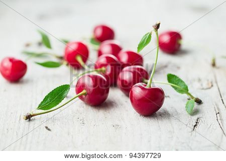 Fresh organic sour cherry, ripe, deep red cherry