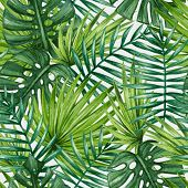 image of tropical rainforest  - Watercolor tropical palm leaves seamless pattern - JPG