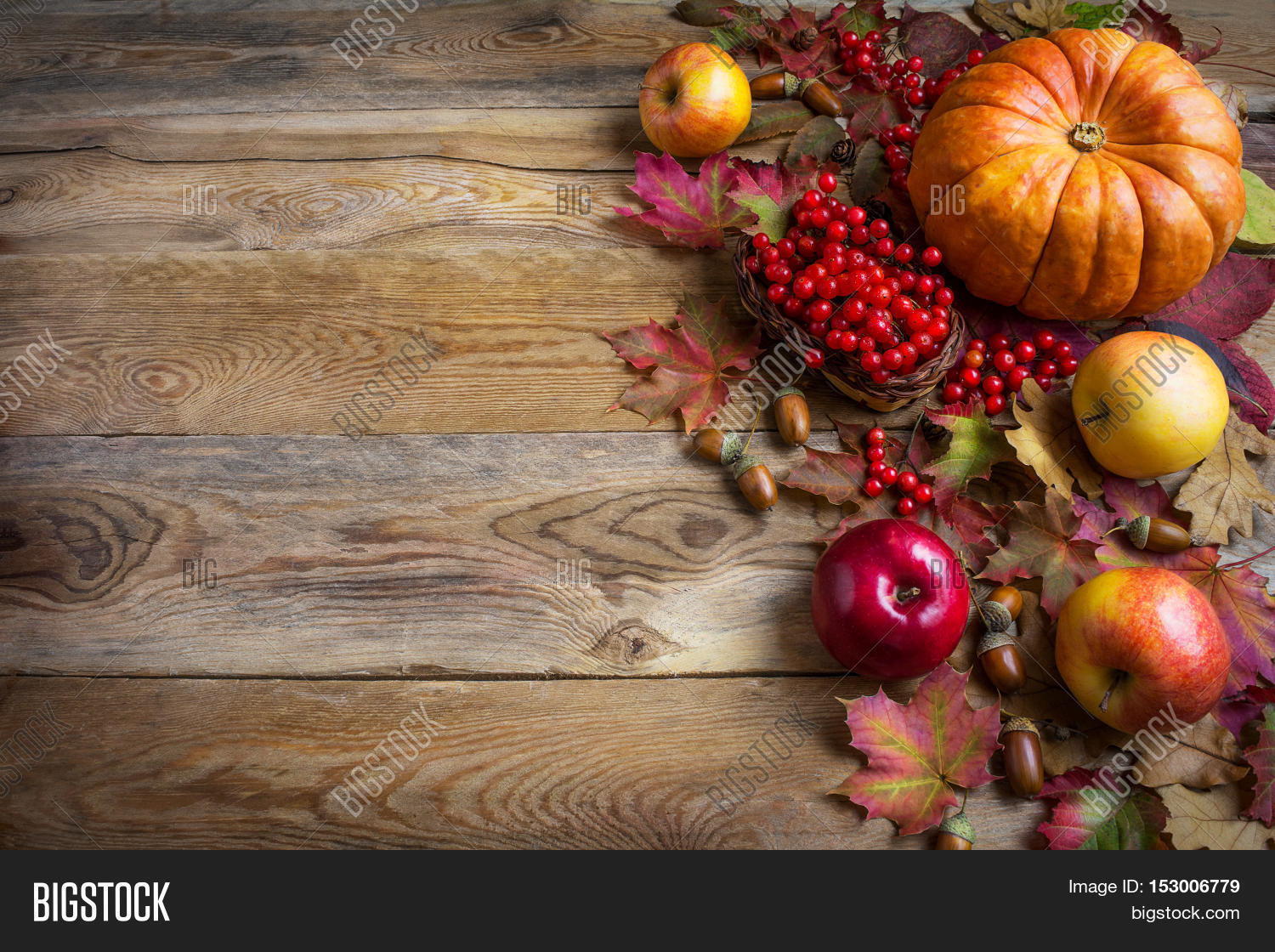 thanksgiving greeting images
