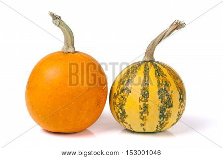 Orange and striped decorative pumpkins isolated on white background.