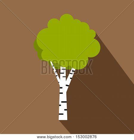 Birch icon. Flat illustration of birch vector icon for web design