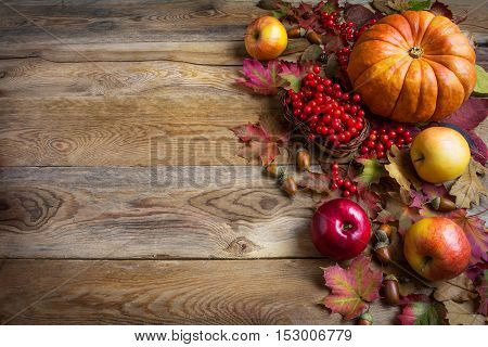 Thanksgiving greeting background with orange pumpkins apples and fall leaves. Thanksgiving background with seasonal vegetables and fruits.