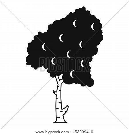 Birch icon. Simple illustration of birch vector icon for web