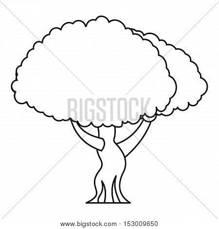 Oak tree icon. Outline illustration of oak tree vector icon for web