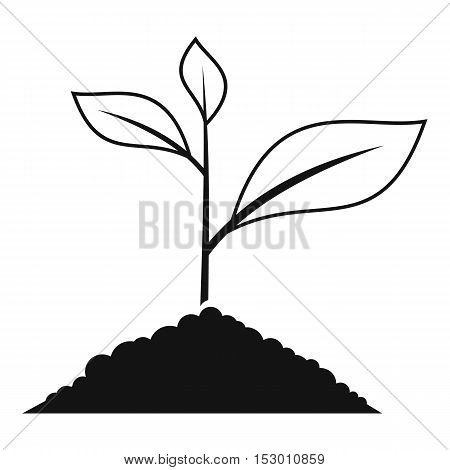 Growing plant icon. Simple illustration of growing green plant vector icon for web