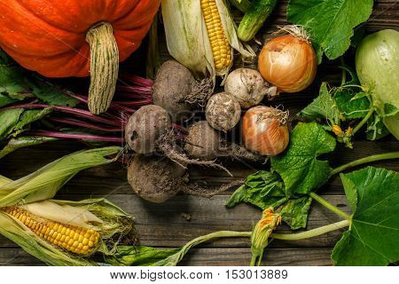 Freshly harvested vegetables with dirt
