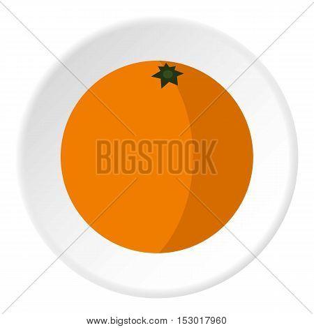 Orange icon. Flat illustration of orange vector icon for web
