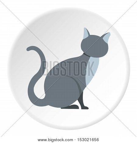 Cat icon. Flat illustration of cat vector icon for web