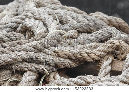 closeup boat ropes dry  in nature .
