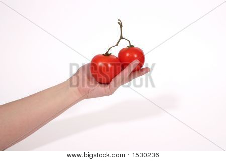 Hand Holding Tomatoes 2