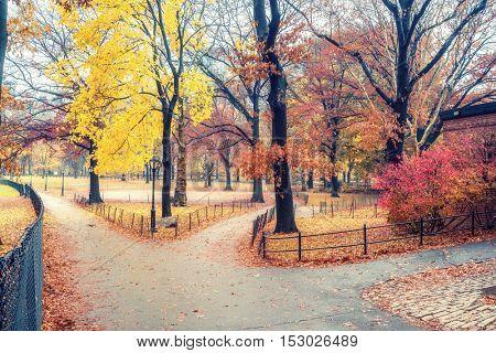 Central park at rainy day, New York City, USA