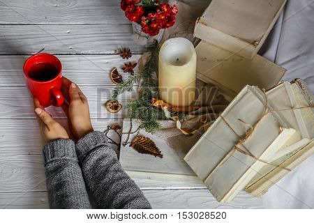 Warm And Cozy,  Concept Girl Hands With A Cup Of Tea