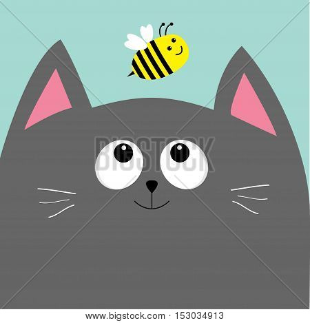 Gray cat head looking at honey bee insect. Cute cartoon character. Pet baby collection Card. Flat design. Blue sky background. Vector illustration.