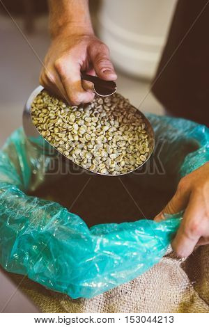 Close-up of unrecognizable worker holding scoop full of green coffee beans above bag