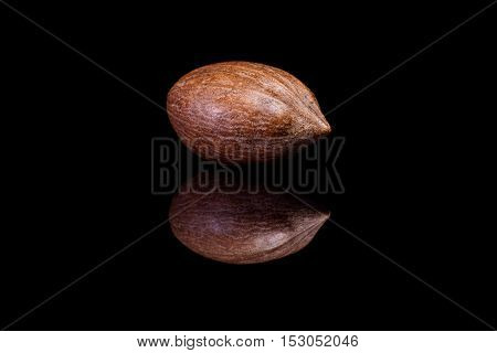 Single shelled pecan nut isolated on black reflective background