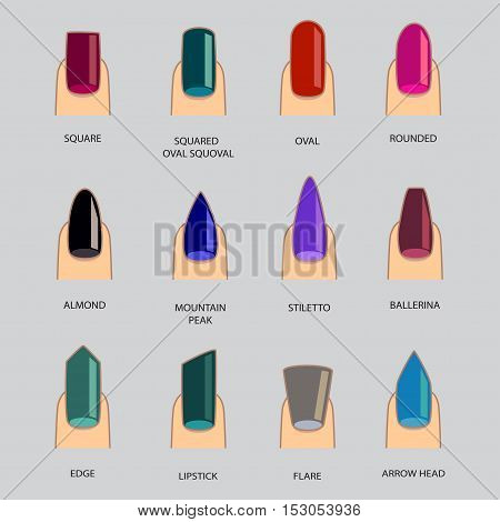 Set of different shapes of nails on gray. Nail shape icons. Manicure polish. Vector illustration
