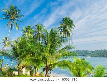 Idyllic Island Serenity Shore