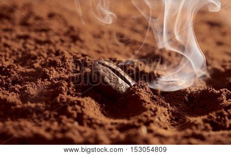 Coffee powder with bean, close up