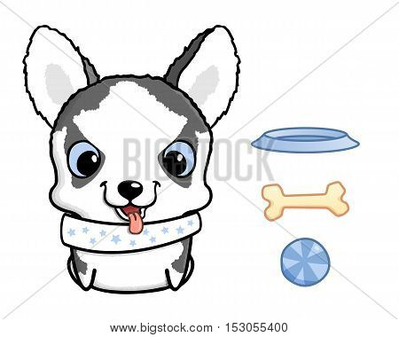 Cute cartoon siberian husky puppy. Vector illustration isolated on white. Siberian husky puppy with bowl, bone and ball. Sweet little dog with big head