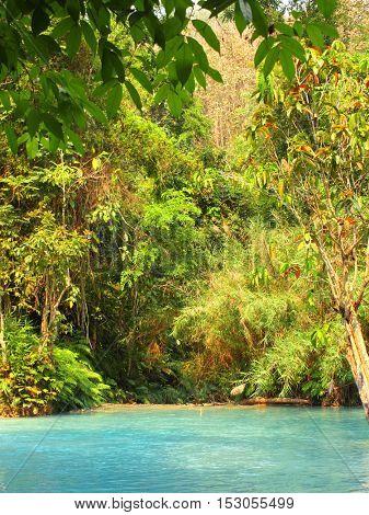Pond near toTad Kuang Si waterfall in rainforest, Luang Prabang, Laos