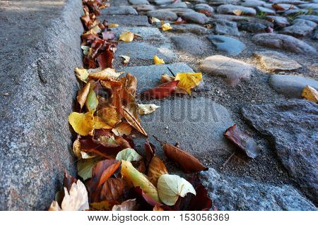 cobbled pavement covered with autumn leaves, block
