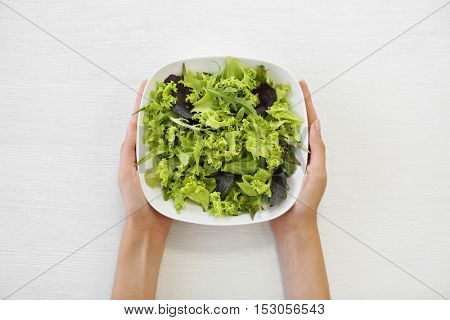 Female hands holding bowl with mixed salad leaves isolated on white