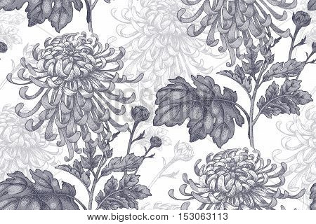 Flowers black chrysanthemum on a white background. Seamless pattern for a fabric paper wallpaper textile packaging drapes. Vector illustration. Vintage.