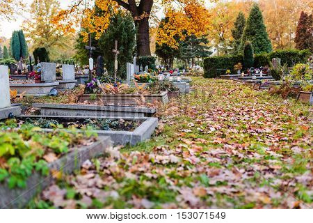 Old Cemetery At Autumn.